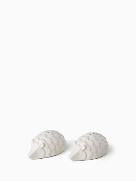cannon street hedgehog salt & pepper set by kate spade new york