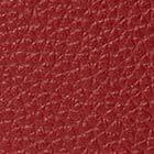 RED CURRANT MULTI color