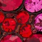 RED MULTI color