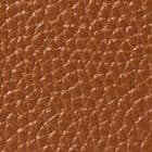 WARM GINGERBREAD color