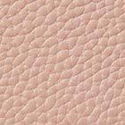 FLAPPER PINK color