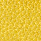 GOLDEN CURY color